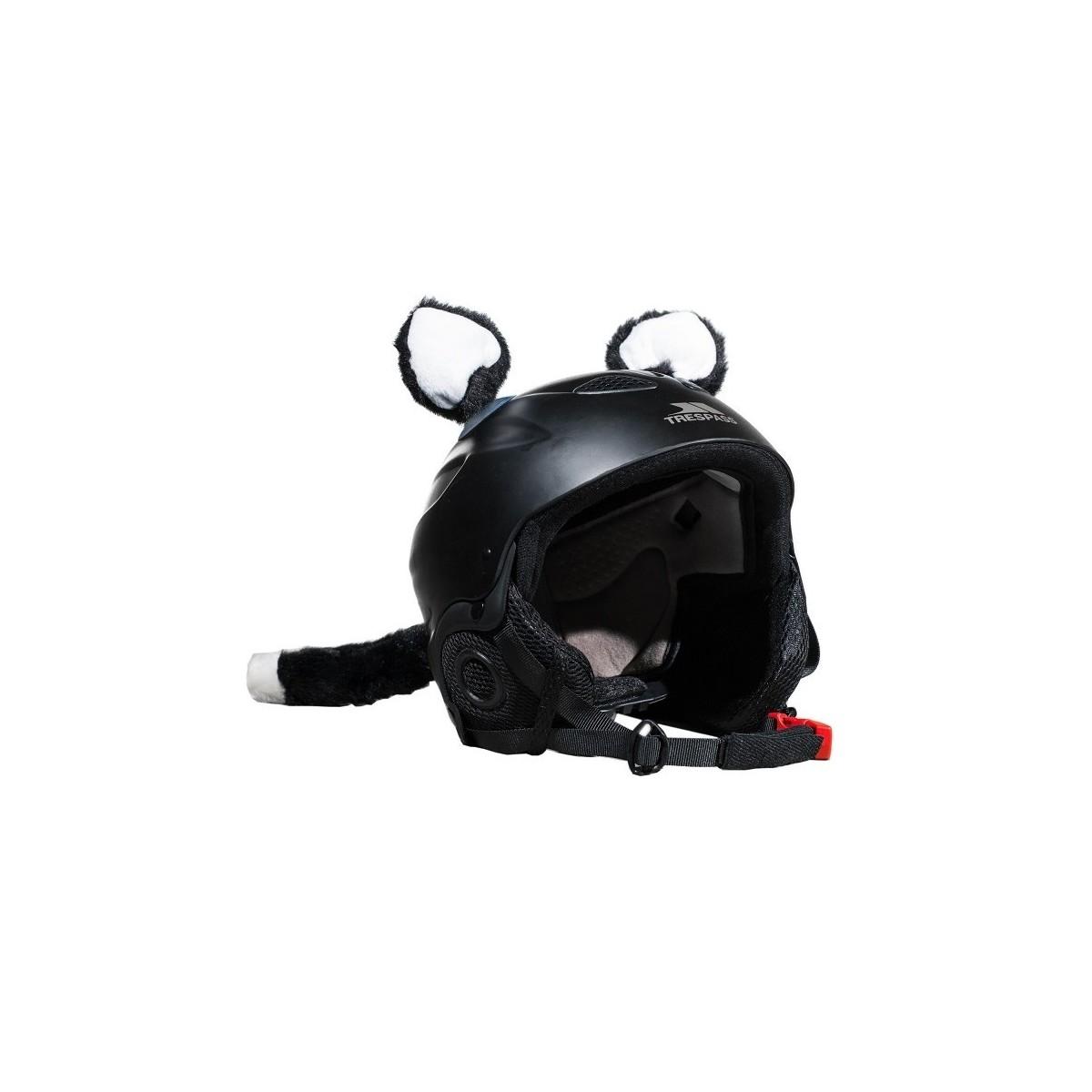 accessoire de d coration de casque moto chat moto. Black Bedroom Furniture Sets. Home Design Ideas